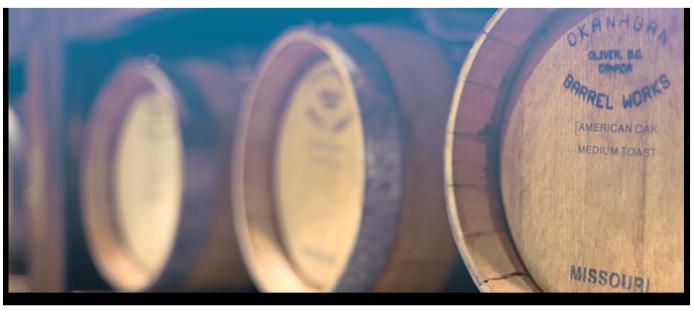barrel-slide-blue3